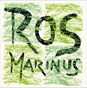 logo-rosmarinus